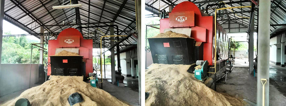 DZL6-1.6-T, 6tons/h coal biomass fired steam boiler