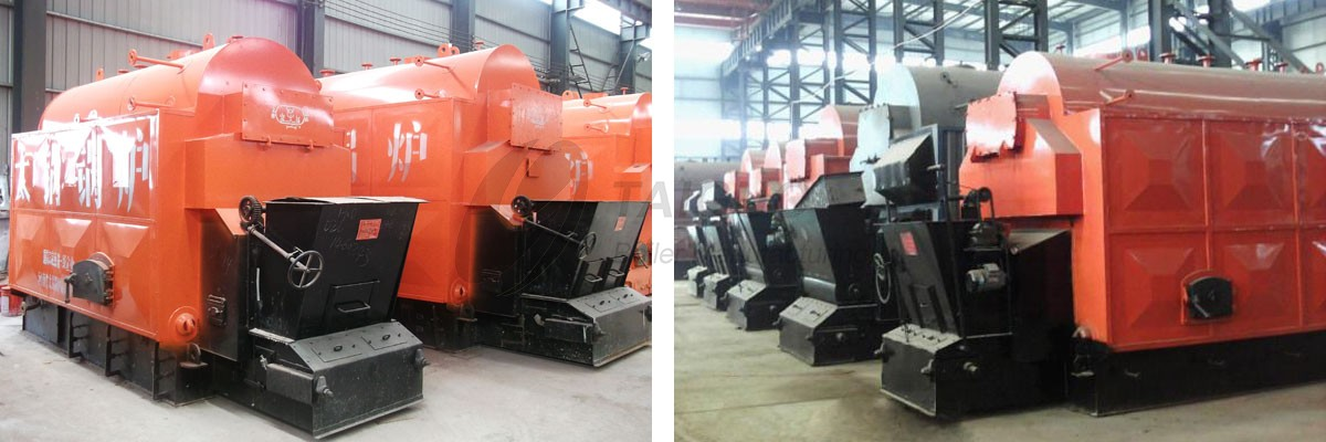 Automatic Type DZL Series Coal